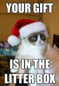 Grumpy cat Christmas time